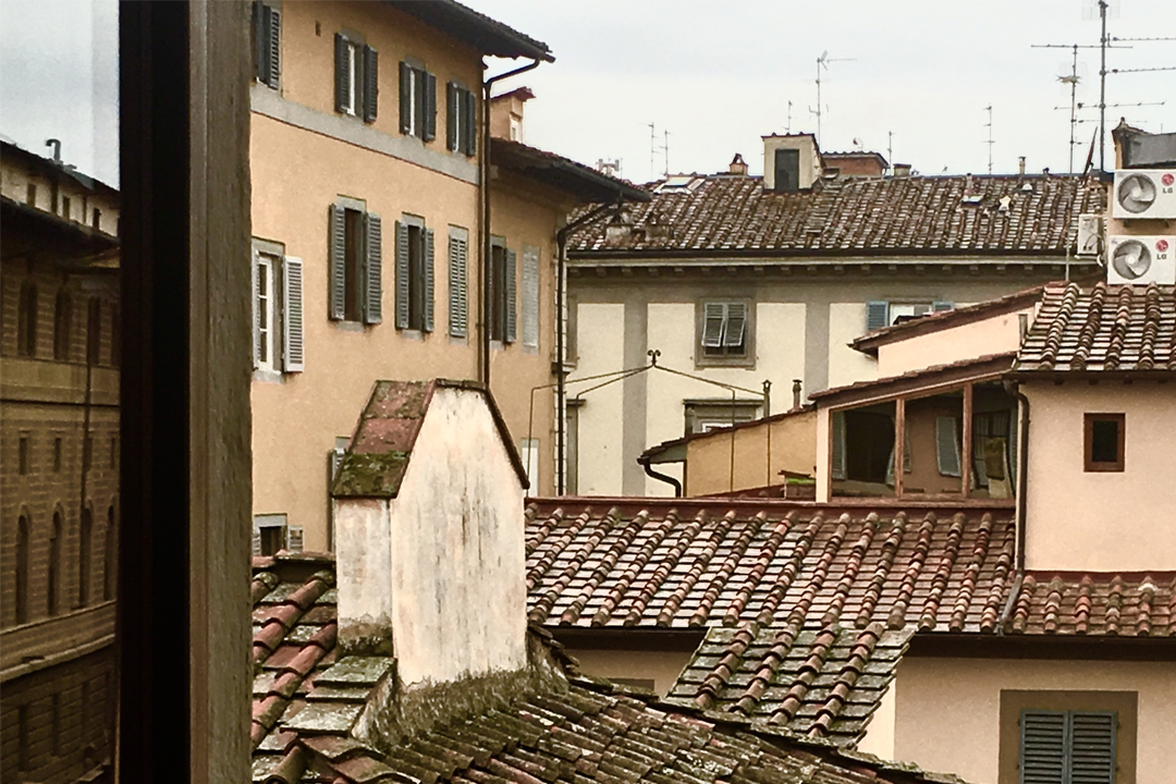 View from the window on the florentine roofs